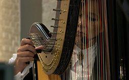 Harp dichtbij